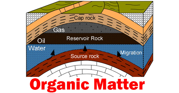 Organic-Matter-and-source-rock-cover