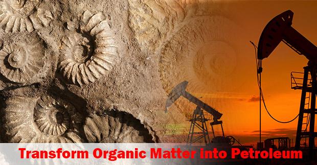 Transform-organic-matter
