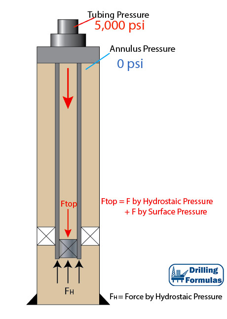 Figure 1 - Wellbore Schematic